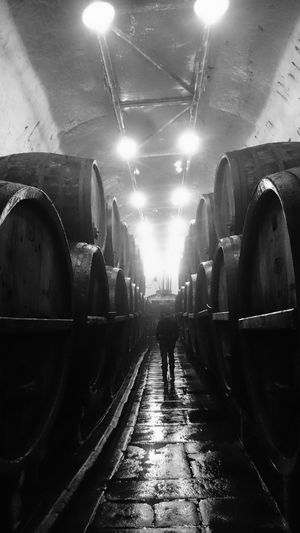 Beer Plzen Underground Barrel Black And White Brewery Cellar Museum Old Buildings One Person Pilsnerurquell