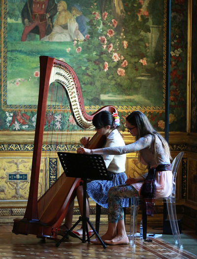 Ancient Palace.  Girls Harp Harper Indoors  Lifestyles Milano Music Musician Person Sitting Wall Art Women Who Inspire You XIX Century Young Women