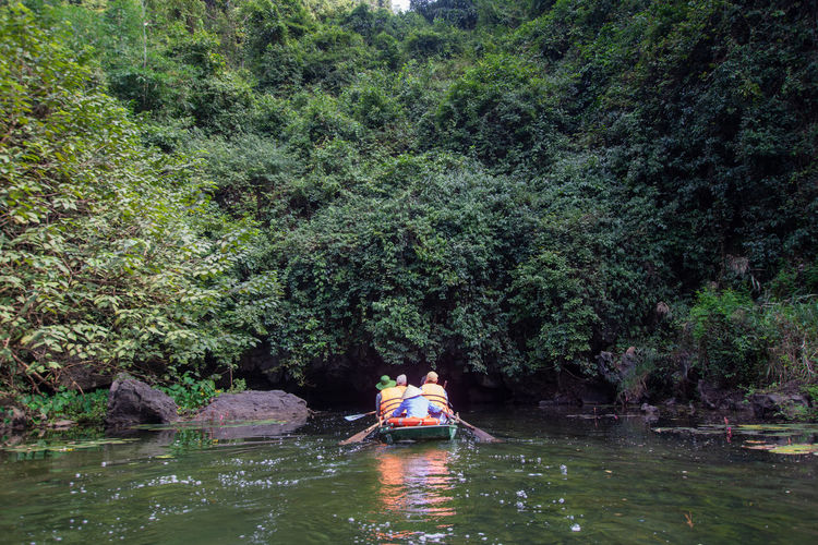 tourist sitting on boat at Trang An, Ninh Binh, Vietnam. Water Nautical Vessel Tree Plant Transportation Mode Of Transportation Waterfront Real People Nature River Day Beauty In Nature Forest Rear View Leisure Activity Growth Green Color Lifestyles Scenics - Nature Outdoors