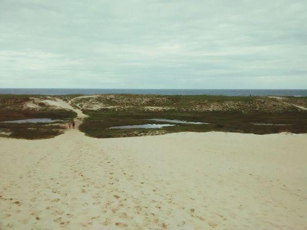 Fim da trilha do Pico da Cruz no sul da Ilha de Florianopolis