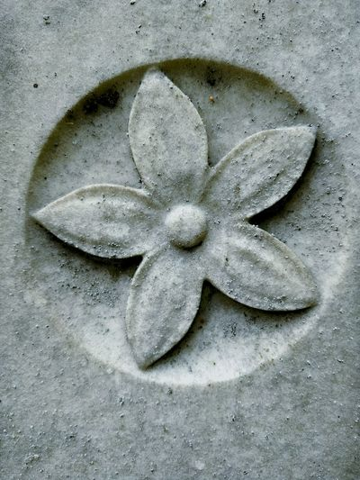 No People Day Close-up Stones Flower Textured  Carved Carved In Stone Petal Simplicity Stone Manmade Beauty Remembering Old Times Remberence Memorial Carving - Craft Product Gravestone Grave Tombstone Graveyard Cemetery Flower Head Tomb Mourning The End