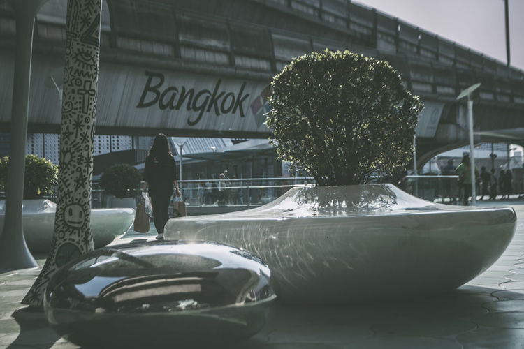Bangkok ~ City of (Art) Life The Traveler - 2018 EyeEm Awards Architecture Art And Craft Built Structure Communication Day Glass - Material Growth Nature No People Outdoors Plant Potted Plant Representation Retail  Text Tree Water Western Script