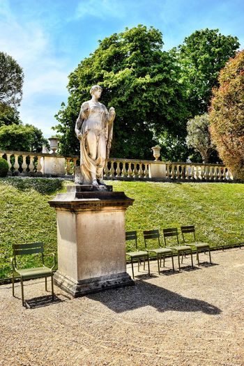 Statue Sculpture Human Representation Tree Male Likeness Art And Craft Creativity Outdoors Day Sky Park - Man Made Space No People Nature Jardin Du Luxembourg Paris, France  Colors Summer Chairs Grass