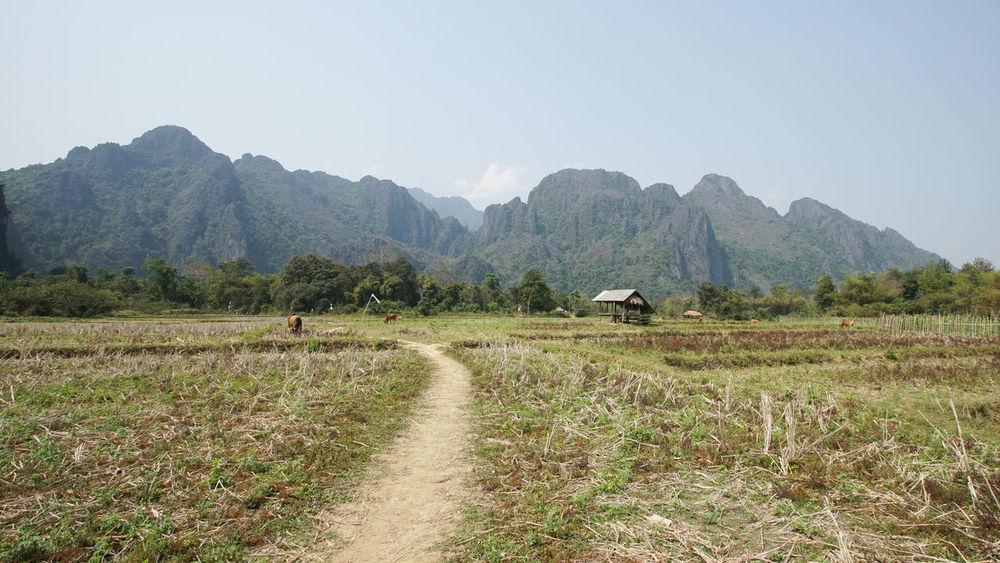 Landscape around Vang Vieng, Laos, Asia Agriculture ASIA Beauty In Nature Countryside Day Destination Landscape Laos Mountain Mountain Range Mountains Nature Outdoors Panorama Rural Rural Scene Scenery Scenics Tourism Travel Travel Destinations Trekking Vacation Vang Vieng Wilderness