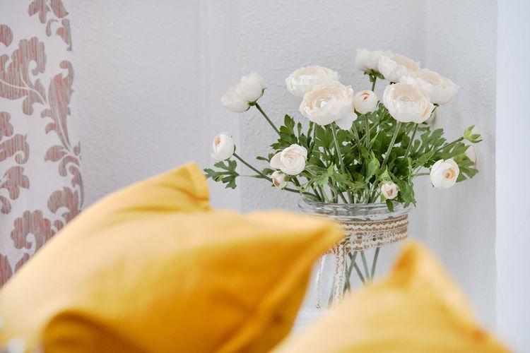 Close-up of white rose flower vase