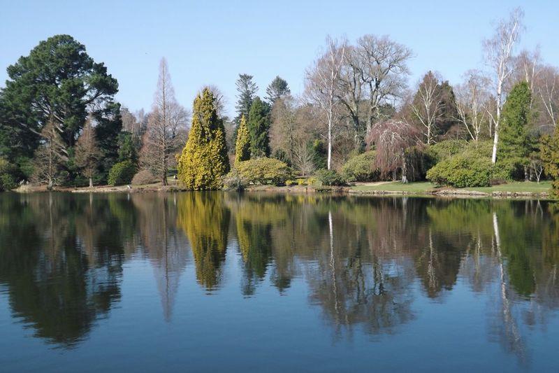 Sheffield Park in spring Nationaltrust