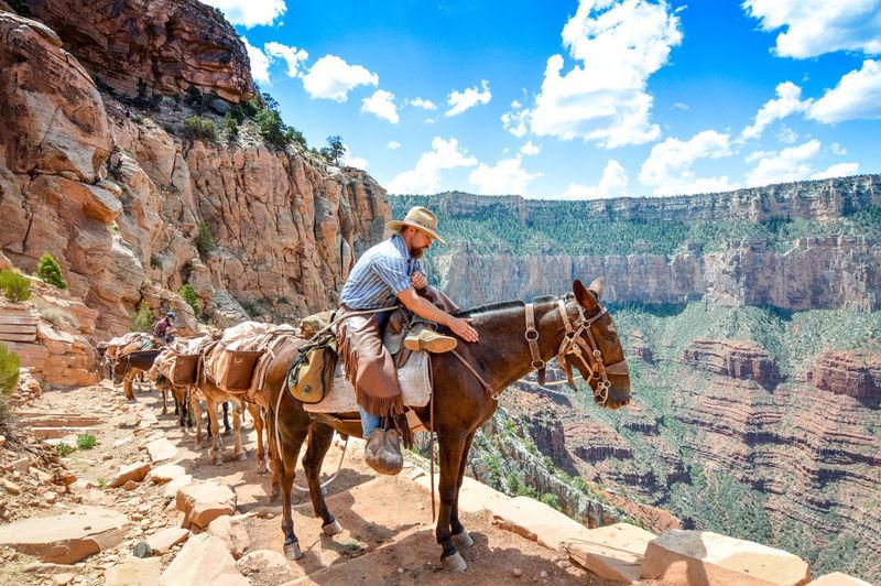 Full length of man riding horse against sky