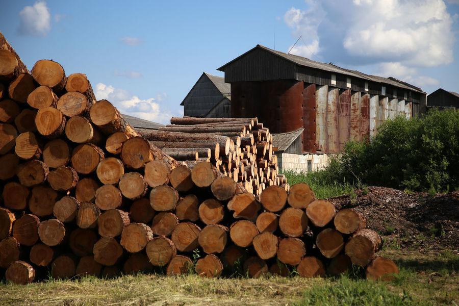 Wood Factory Sawmill Saw Mill Lumber Industry Lumberyard Lumber Mill Latvija Latvia On The Road Country Road
