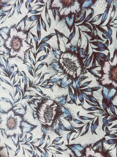 Flowers Bloomen Pink Flower Blue Beautiful