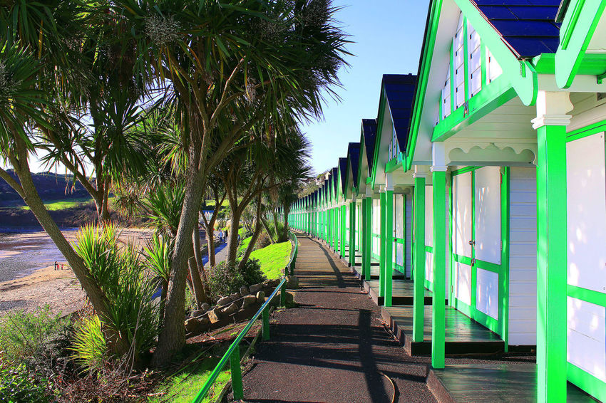 Langland Bay beach huts Swansea Architecture Building Exterior Built Structure Day Diminishing Perspective Footpath Green Color Outdoors Palm Tree Railing Sky Tree Wood - Material