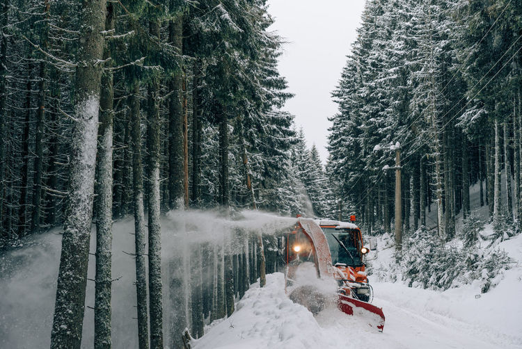 Working Snowy Road Road Mountain Road Snow Sprayer Snow Spray Snow Spreading Winter Winter Trees Winter Road Forest Snow Cold Temperature Winter Weather Outdoors Transportation Tree Nature Motion Day Beauty In Nature Spraying Shades Of Winter Business Stories