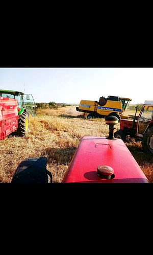Agriculture Business Finance And Industry No People Industry Rural Scene Outdoors Day Masseyferguson Johndeere Plant Agriculture Sun First Eyeem Photo NewHolland