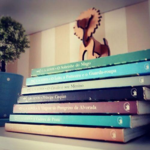 Lion Books Ascronicasdenarnia EyeEmNewHere EyeEm Diversity