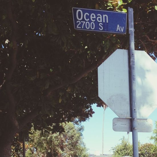 There's a place off Ocean Avenue where I used to sit and talk with you. We were both sixteen and it felt so right; sleeping all day, staying up all night. First Eyeem Photo