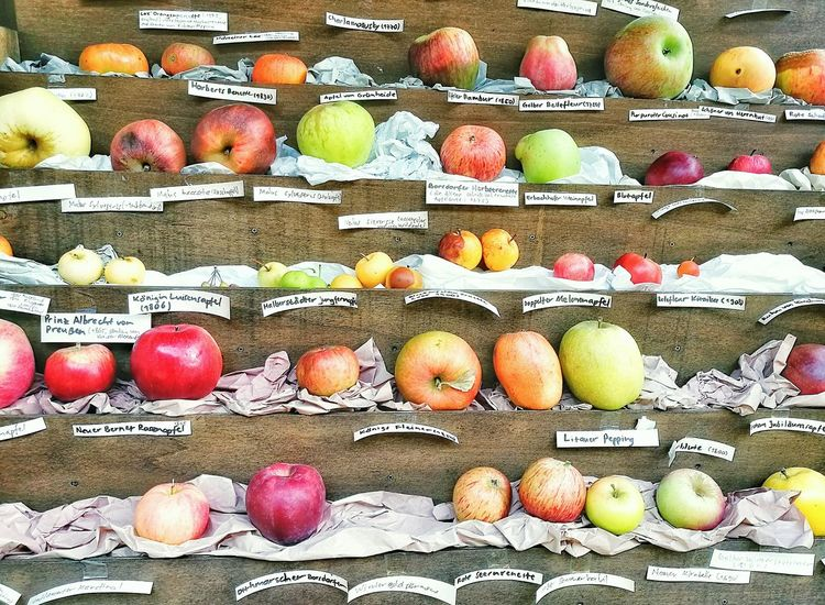 Apfelernte Variation Freshness Abundance Choice For Sale Retail  Multi Colored German Food And Drink Food And Drink Food Large Group Of Objects Arrangement Consumerism Market Collection In A Row Sale Retail Display Still Life Display Selling Fruit