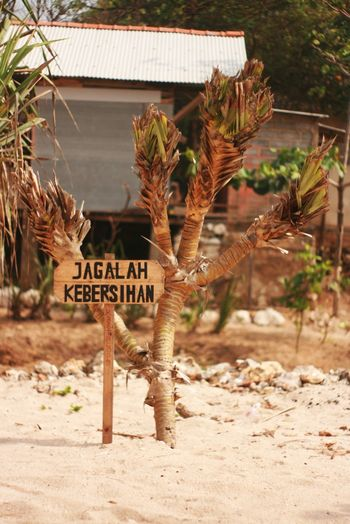 Keep it clean signboard in Indonesia Language Java Sign Tree Yogyakarta Beach Close-up Day Keep It Clean Nature No People Outdoors Sand Signboard Text