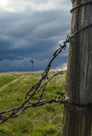 In the distance Barbed Wire Cloud - Sky Day East Of Van Tassel Wyomin Grass Metal No People Outdoors West Of Harrison Nebraska