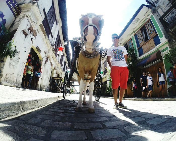 say hi! Vigan Philippines Horsepower Horse Calle Crisologo Kalesa Travel Morefuninthephilippines