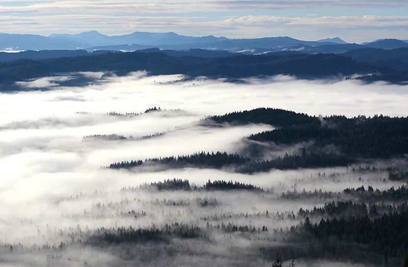 Scenic View Of Fog Covered Mountains Against Sky