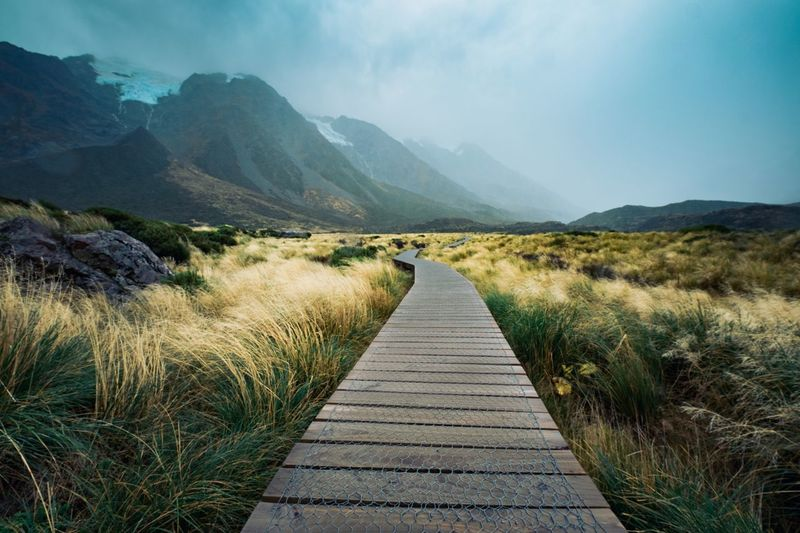 Boardwalk Through Field Leading Towards Mt Cook