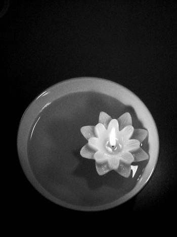 Beauty In Nature Black Black & White Black And White Black Background Blackandwhite Bowl Candle Candlelight Close-up Day EyeEm Best Shots Floating On Water Flower Flower Head Fragility Freshness Indoors  Nature No People Petal