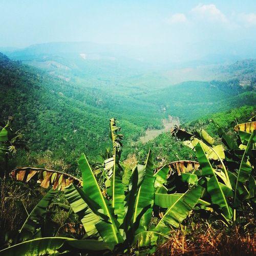 Thekady a hill