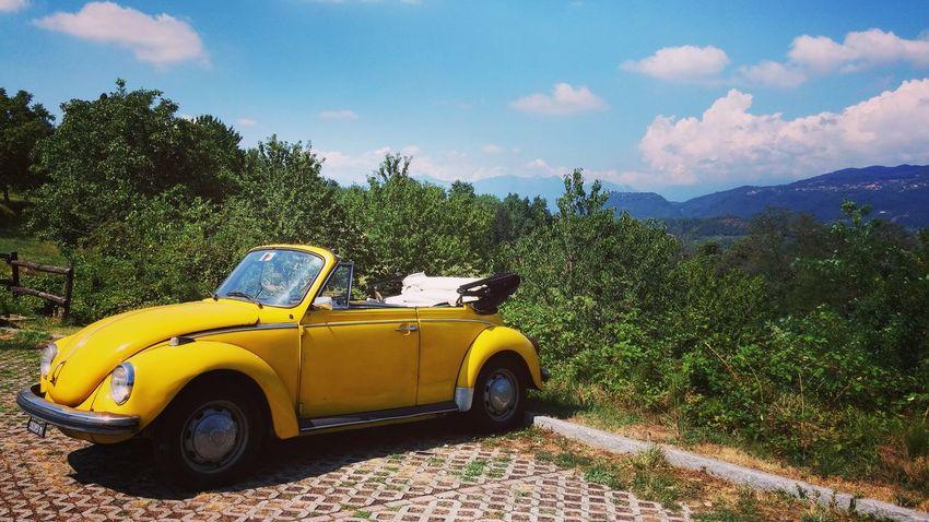 beetle Vwbeetle Montevecchia Italy First Eyeem Photo