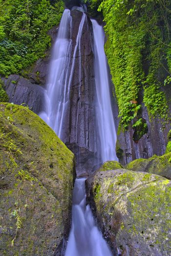 Kuning / Yellow waterfall bali Waterfall Water Scenics - Nature Beauty In Nature Motion Long Exposure Tree Plant Flowing Water Rock Forest Blurred Motion Nature Land Non-urban Scene Rock - Object Solid Rock Formation Day No People Outdoors Flowing Power In Nature Falling Water Rainforest
