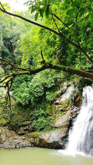 Río Barranca