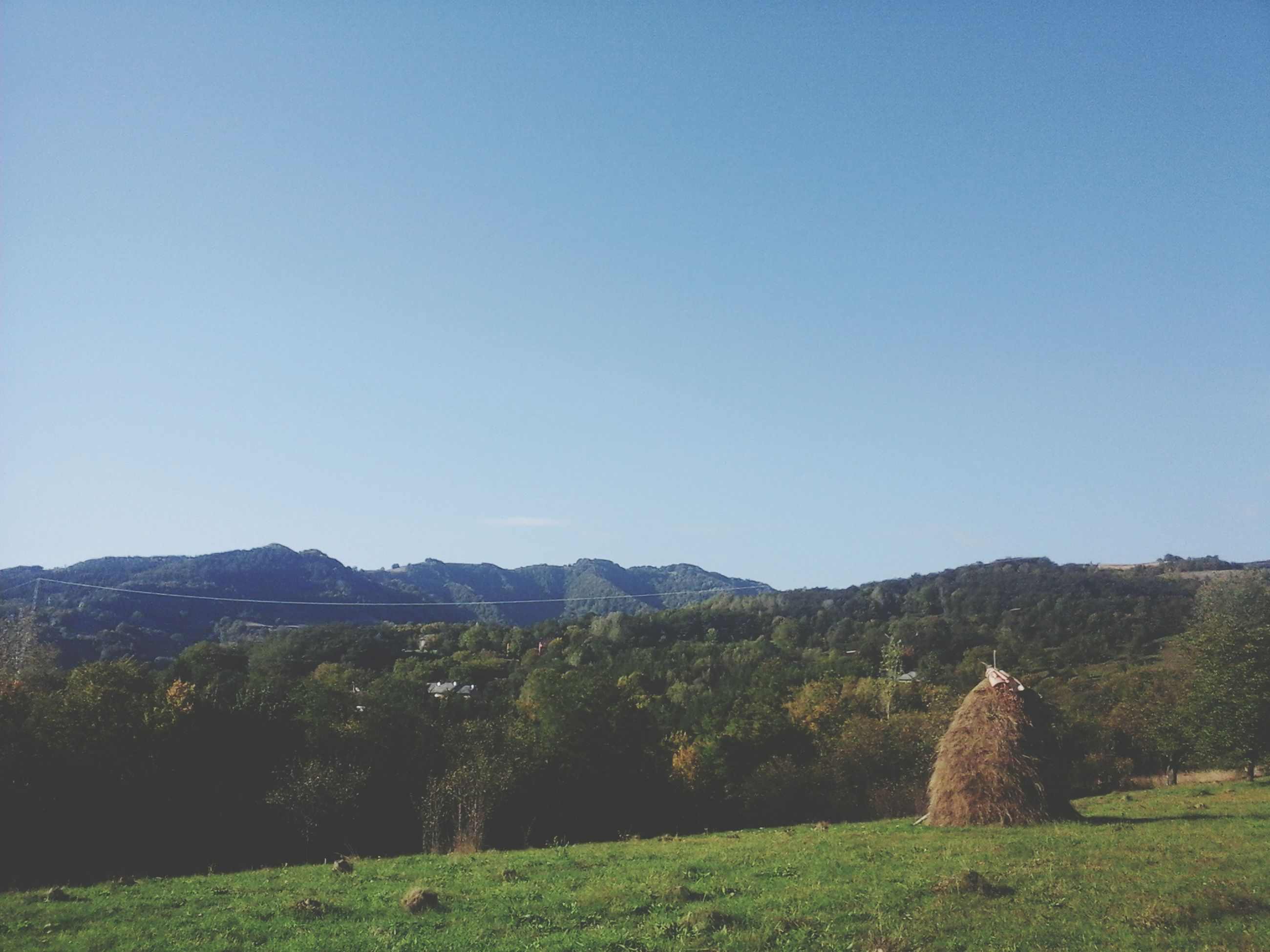 clear sky, copy space, landscape, tranquil scene, tranquility, mountain, blue, scenics, beauty in nature, tree, nature, field, grass, non-urban scene, hill, mountain range, growth, countryside, idyllic, remote