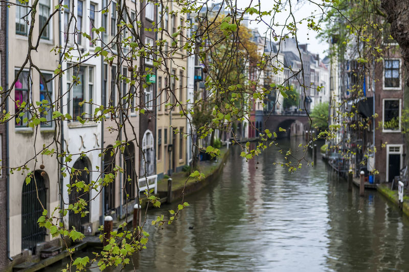 Architecture Built Structure Building Exterior Building Plant Water Nature Canal No People Tree Waterfront City Residential District Day Reflection Outdoors House Connection Transportation