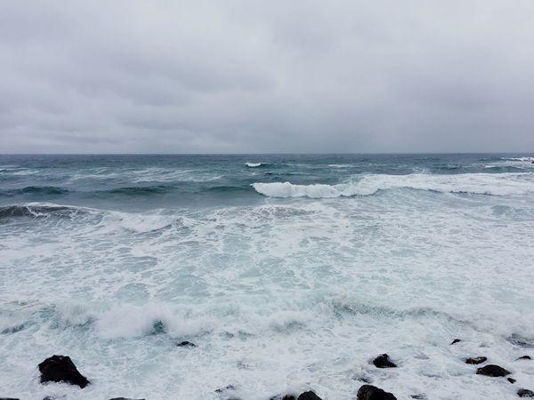 まるで真冬の日本海。大荒れ。 Sea