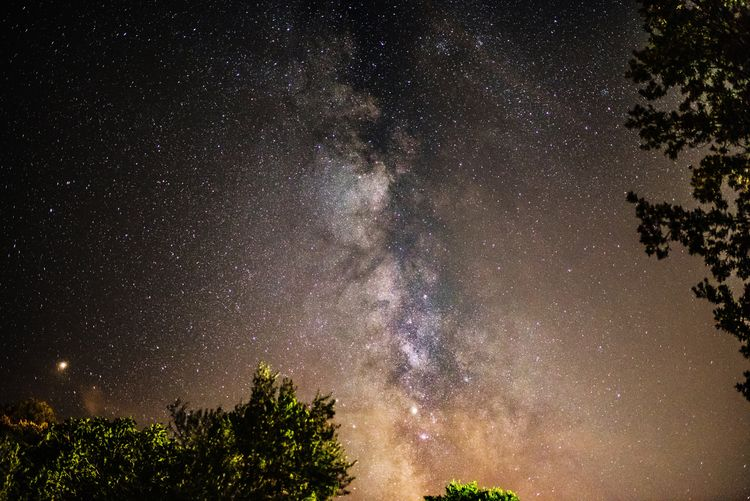 The milky way over Corsica 😍 Landscape_lover Naturephotography Beauty View Landscape_lovers Nikon Nikonphotography Nikonphotographer EyeEm Best Shots EyeEm Nature Lover EyeEm Selects EyeEm Gallery Photooftheday Picoftheday My Best Photo Eye Em Around The World Astronomy Galaxy Milky Way Tree Space Star - Space Constellation Sky Space And Astronomy Star Field Starry Infinity Space Exploration