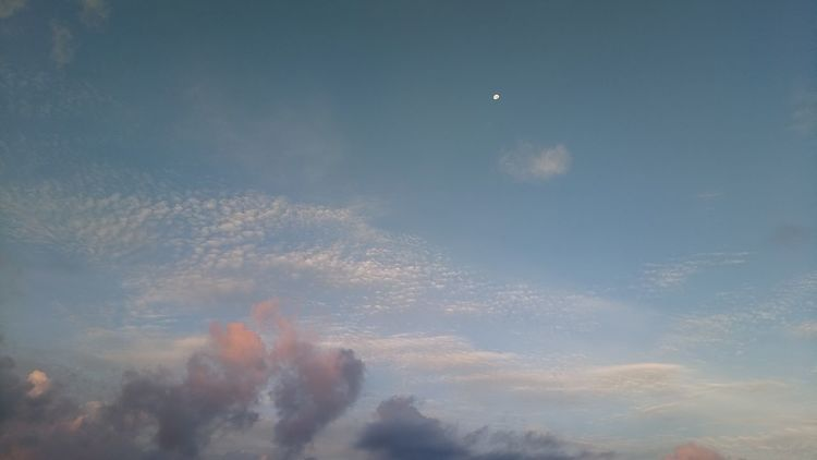 Can you see the morning moon? Edenmandom Hanging Out Morning Jogging Sky Cloud - Sky Planetary Moon Moon