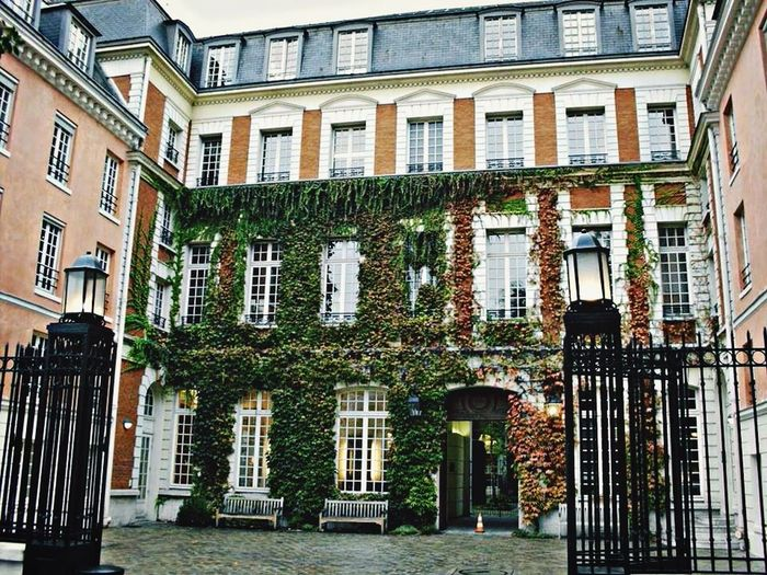 Beautiful Street Photography Paris Rue De Paris