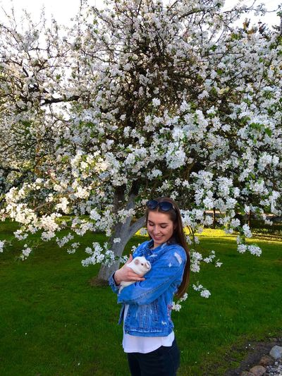 Smiling woman holding guinea pig while standing by flowering tree