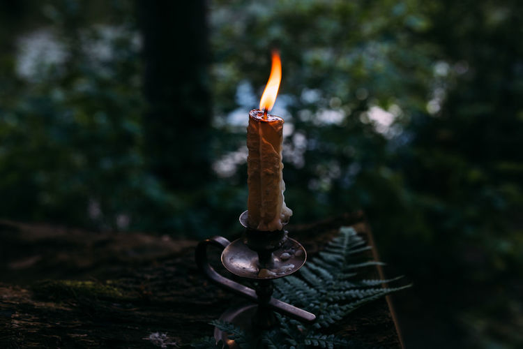Close-up of burning candles on wood