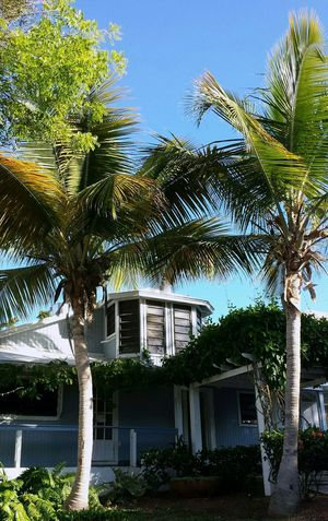 ... old main building...Reception, Restaurant and vine celar... were I used to play poker with my friends ...(2/6) Old House Isla Culebra ,Puerto Rico