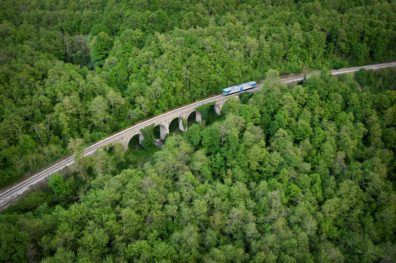 High angle view of rrailway amidst trees in forest
