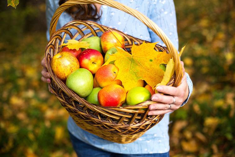 Fruits in basket