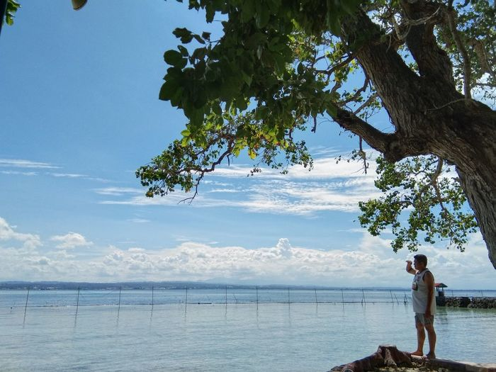 Man standing by tree at beach