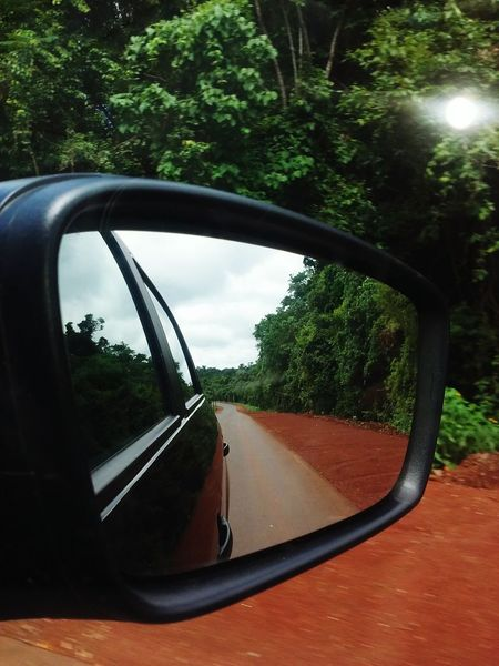 Misiones Rainforest Selva Tree Car Reflection Transportation Side-view Mirror Mode Of Transport Vehicle Mirror No People Outdoors Day Close-up . Miles Away Andresito Misiones Misiones, Argentina