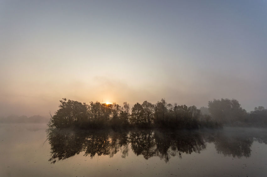 misty autumn morning Reflection Water Fog Tranquility Sky Tranquil Scene Lake Sun Tree Beauty In Nature Scenics - Nature Nature Idyllic No People Morning Plant Sunlight Sunset Outdoors Reflection Lake