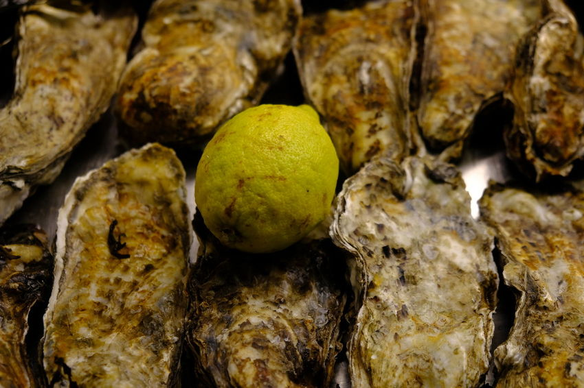 Event Fresh Oyster Party Time Seafood Seafood Market Fish Market Food Food And Drink Food Photography Foodphotography Fresh Oysters And Lemon Freshness Healthy Eating Lemon Oyster  Oyster Shell Oyster Time Oysterbar Oysters Sea Food Sea Food Dinner Sea Food Photography Sea Food Restaurant