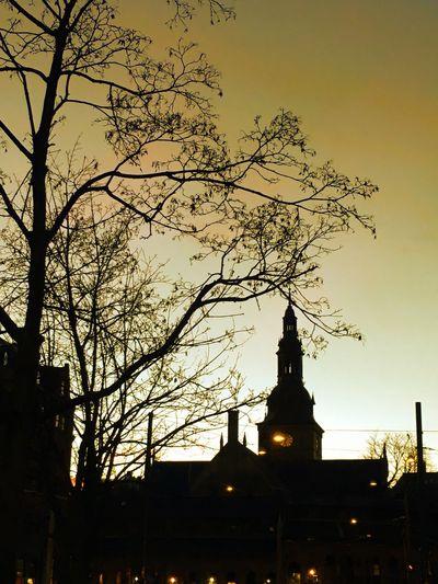 'OldGolden & A Church-tower' 11718342