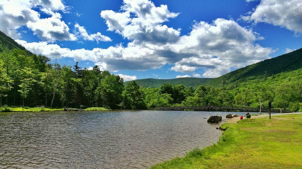 Beauty In Nature, water and trees, Tranquil Scene, Lake Veiw EyeEm Selects EyeEmNewHere Breathing Space The Week On EyeEm