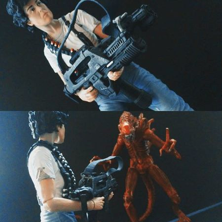 """Hey! You ugly bastard,looking for me?"" Neca Aliens Alien Xenomorph ACBA Actionfigurephotography Actiontoyart Ellenripley Actionfigures Horror Scifi Nerd Toyslagram Toysrmydrug Toys4life Figurecollection Collector Collection Tcb_devilwithin Tcb_peekaboo Figures Toycommunity Tcb_flyupandaway Toyphotography"