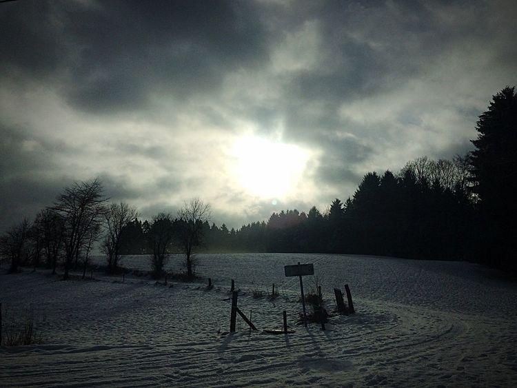 wintermorning Winter Landscape Coolday Deepfreeze