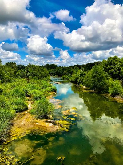River with white egret at top center Water Scenics Nature Cloud - Sky Beauty In Nature Sky Tranquil Scene Tranquility No People Outdoors Day Animal Wildlife River