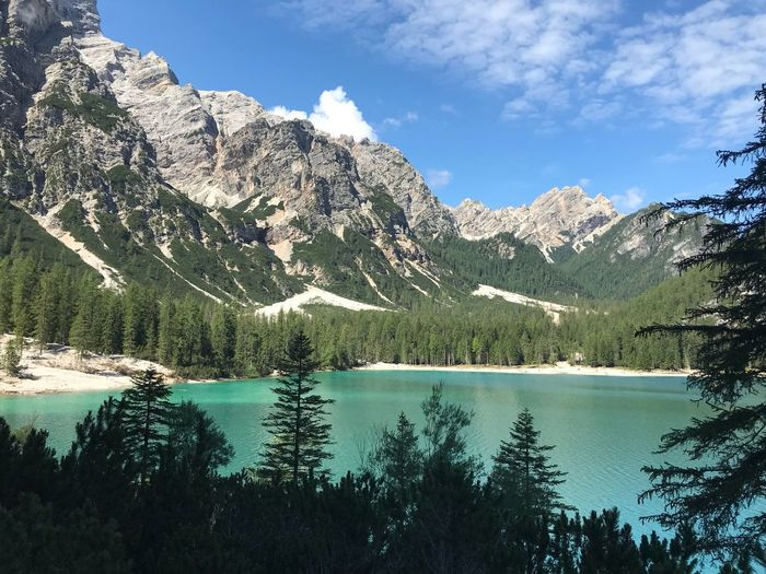 Italy Braies Tree Plant Water Scenics - Nature Sky Beauty In Nature Tranquility Mountain Tranquil Scene Lake Growth Nature Day No People Cloud - Sky Mountain Range Non-urban Scene Idyllic Forest Outdoors